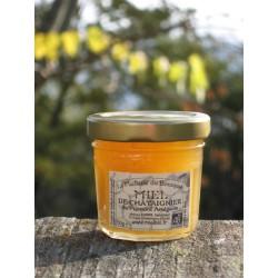 Miel de Châtaignier Bio en pots de 50g