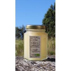 Miel d'Acacia 2014 cristallisé