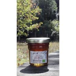 Miel de Sapin des Pyrénées Bio France. Aspect à la récolte